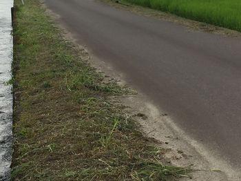 幹線水路沿い.JPG
